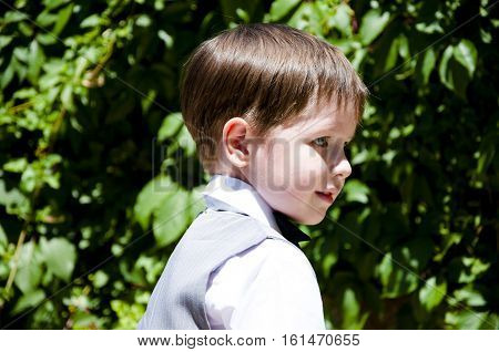 Small Gentleman Boy In Suit And Bow Tie