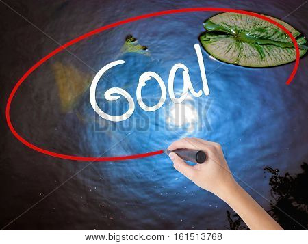 Woman Hand Writing Goal  With Marker Over Transparent Board