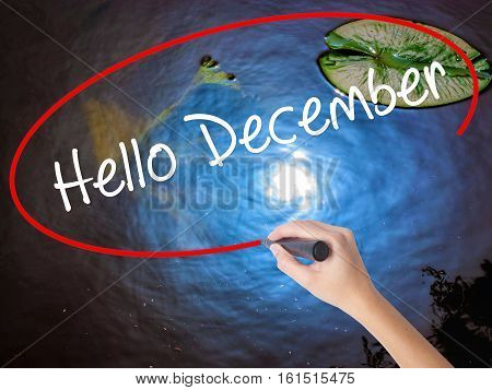Woman Hand Writing Hello December No With Marker Over Transparent Board