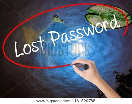 Woman Hand Writing Lost Password  With Marker Over Transparent Board