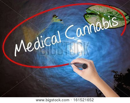 Woman Hand Writing Medical Cannabis With Marker Over Transparent Board