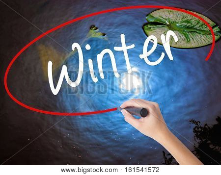 Woman Hand Writing Winter With Marker Over Transparent Board