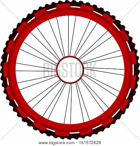 Bicycle wheel isolated on white, bike wheels