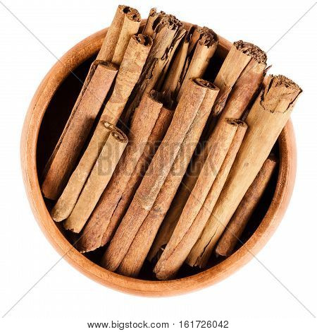 Cinnamon sticks in wooden bowl. Raw brown quills from inner bark of Cinnamomum. Cassia, aromatic spice used as condiment and for flavoring. Isolated macro food photo close up from above over white.