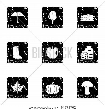 Autumn coming icons set. Grunge illustration of 9 autumn coming vector icons for web