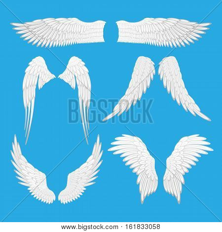 Angel wings vector illustration. Set of angel, eagle bird wings isolated editable elements. Graphic animal abstract wings of different shapes. Tattoo fantasy icons. Decoration for Valentines day.