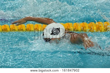 Swimming Competition Images Stock Photos Illustrations Bigstock