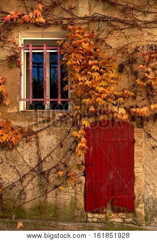 Old building covered with a yellowed ivy. Small window and obsolete red door. Retro styled