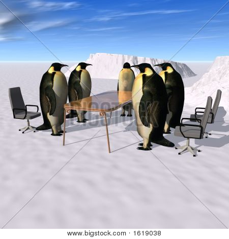 Penguins Meeting