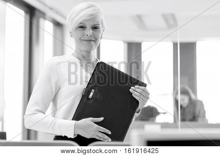 Portrait of mature businesswoman holding file in office