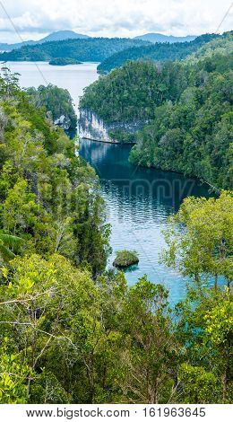 Passage between Jungle Rocks, Mangrove near Warikaf Homestay, Kabui Bay. Gam Island, West Papuan, Raja Ampat. Indonesia