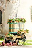 image of wine-press  - wine - JPG