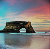 foto of sate  - natural bridge state park in santa cruz for the sunset