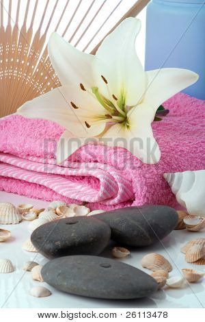 madonna lily spa stones fun and sea shell on white