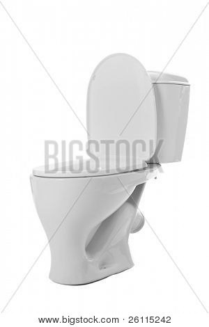 lavatory  pan isolated over white background