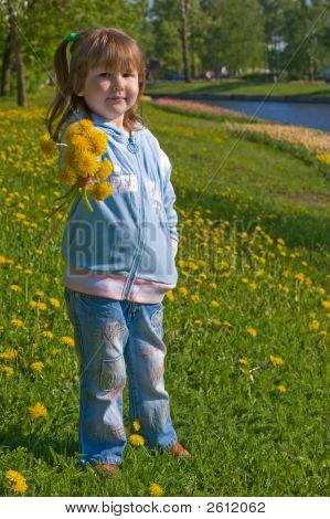 Giving Dandelions Bouquet