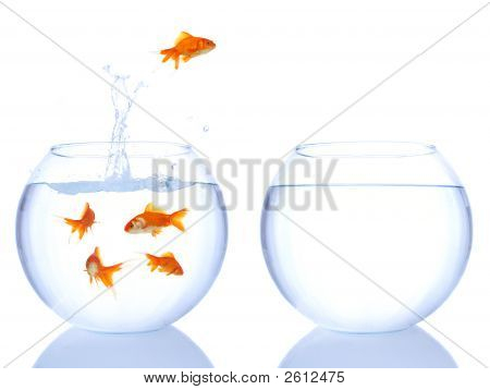 Salto de Goldfish