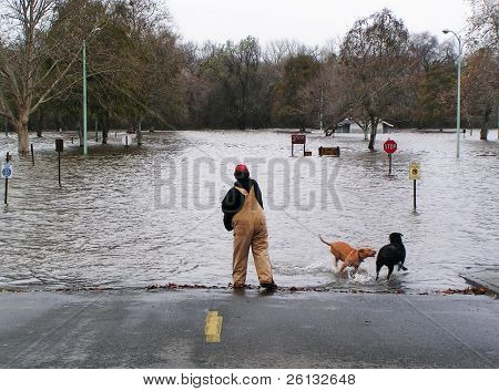Man plays with his dogs in flood waters, American River, Sacramento, California