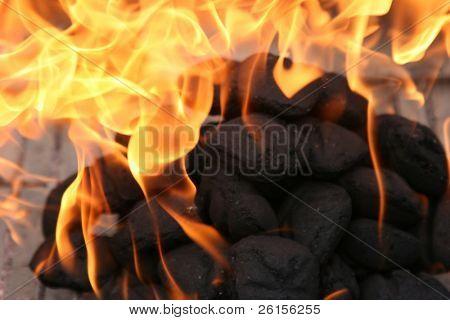 Carbones de barbacoa