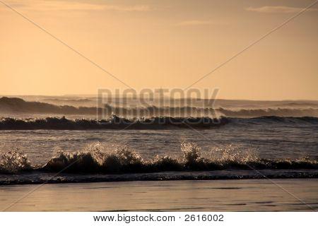 Coquet isla