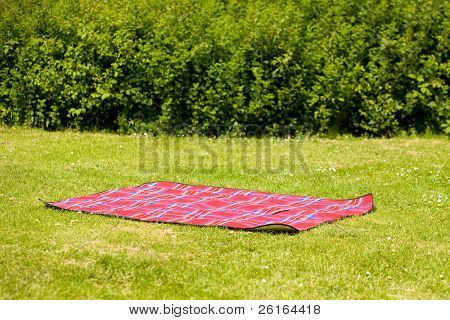 red picnic blanket, carpet, summer or spring concept shoot