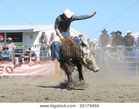 Bucking Bull Airborne