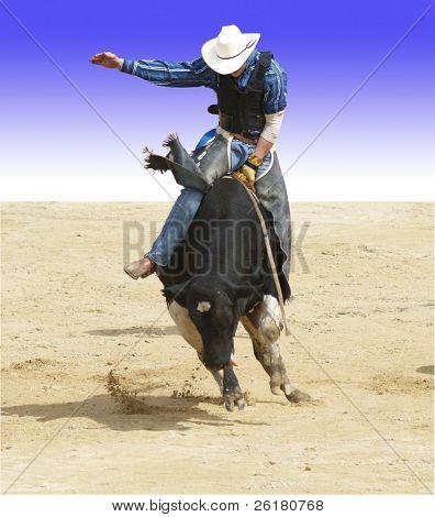 El jinete de Toro