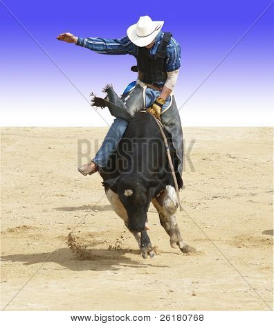 Der Bull-Fahrer