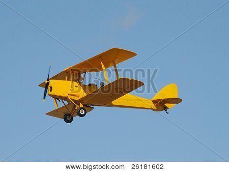 A yellow tiger moth flying in a blue sky