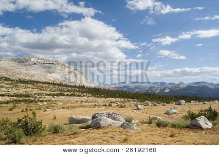High alpine meadow in Yosemite National Park
