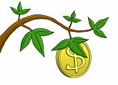 Money Does Grow On Trees!