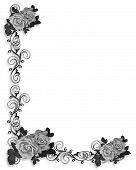 image of white flower  - 3D Illustrated roses design for Valentine or wedding background border or frame with copy space - JPG