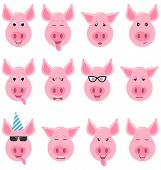 Heads Of Cool Funny Pig Emoticon Characters, Funny, Cool, Angry, Sad. Collection Avatars poster