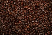 Roasted Brown Coffee Beans Background. Flatlay Style, Messy Pattern. poster