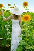 beauty woman in sunflower field