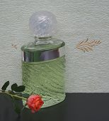 Fragrance For Ladies, Large Perfume Bottle In Front Of The Satin Wallcovering Elysee Decorated With  poster