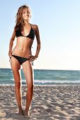 stock photo of woman bikini  - young attractive woman in black bikini on sand beach - JPG