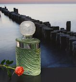 Fragrance For Ladies, Large Perfume Bottle In Front Of The Picture Of A Groyne In The Sea Decorated  poster