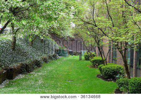 pretty landscaped lawn