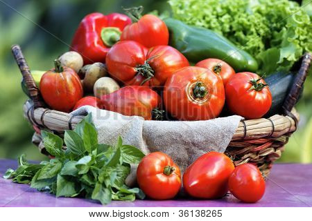 Garten Gemüse