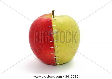 Stapled Apple