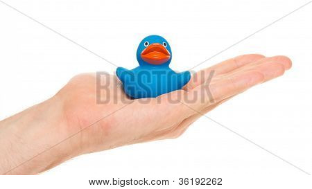 Blue Rubber Duck On A Hand