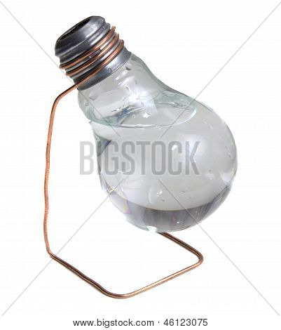 Vase Made From Eletric Bulb With Water