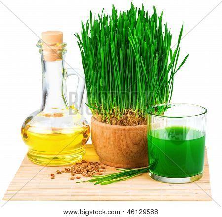 Wheatgrass jugo con germinados de trigo y aceite de germen de trigo en la estera