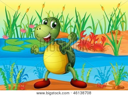Illustration of a turtle in the pond with two crabs at the back