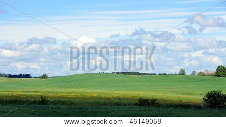 Meadow And Clouds