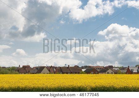 Housing Estate In Suffolk Uk