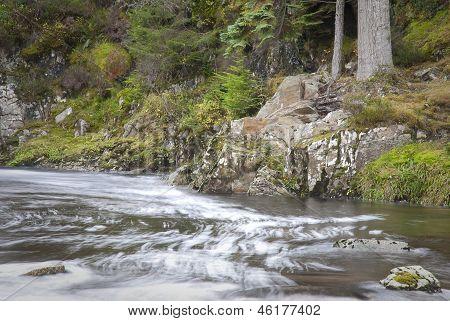 Scottish Stream In Highlands
