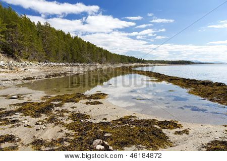 The White Sea Coast At Low Tide, The Kola Peninsula, Russia