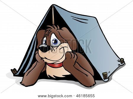 Brown Puppy Dog Camping